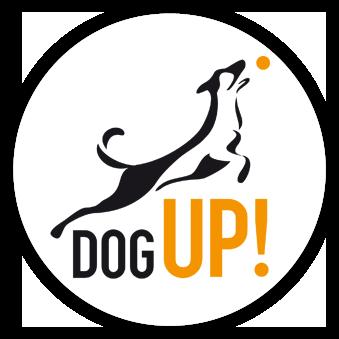 DogUp! • Szkolenie Psów